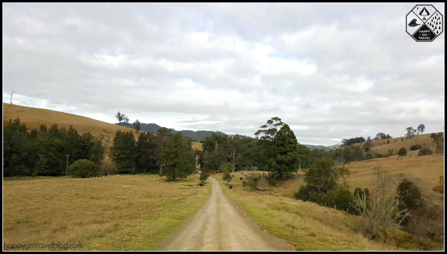 Ladies Well, Chichester State Forest | Barrington Tops | country roads