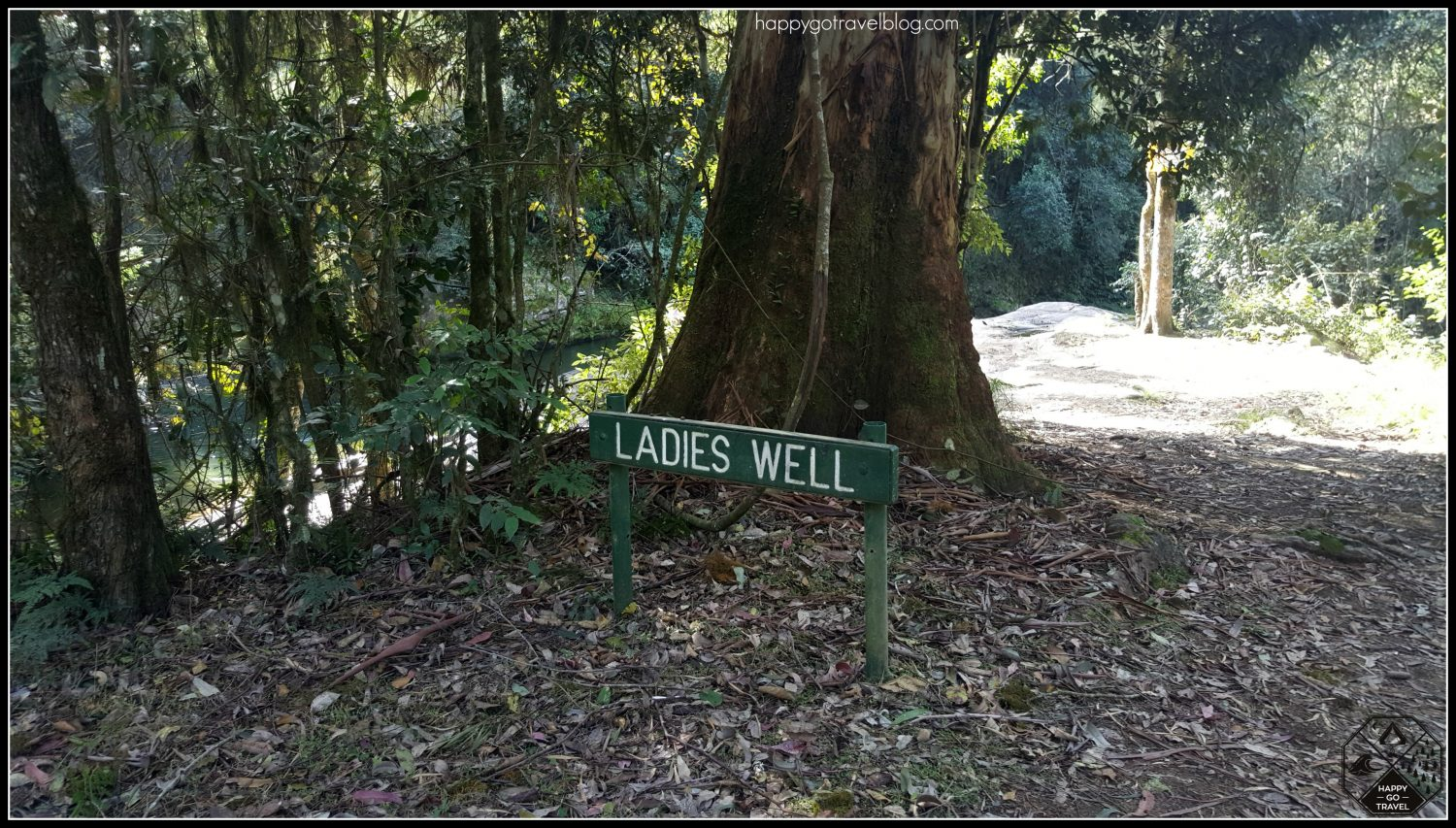 Ladies Well, Chichester State Forest | Barrington Tops | Entrance to waterfalls