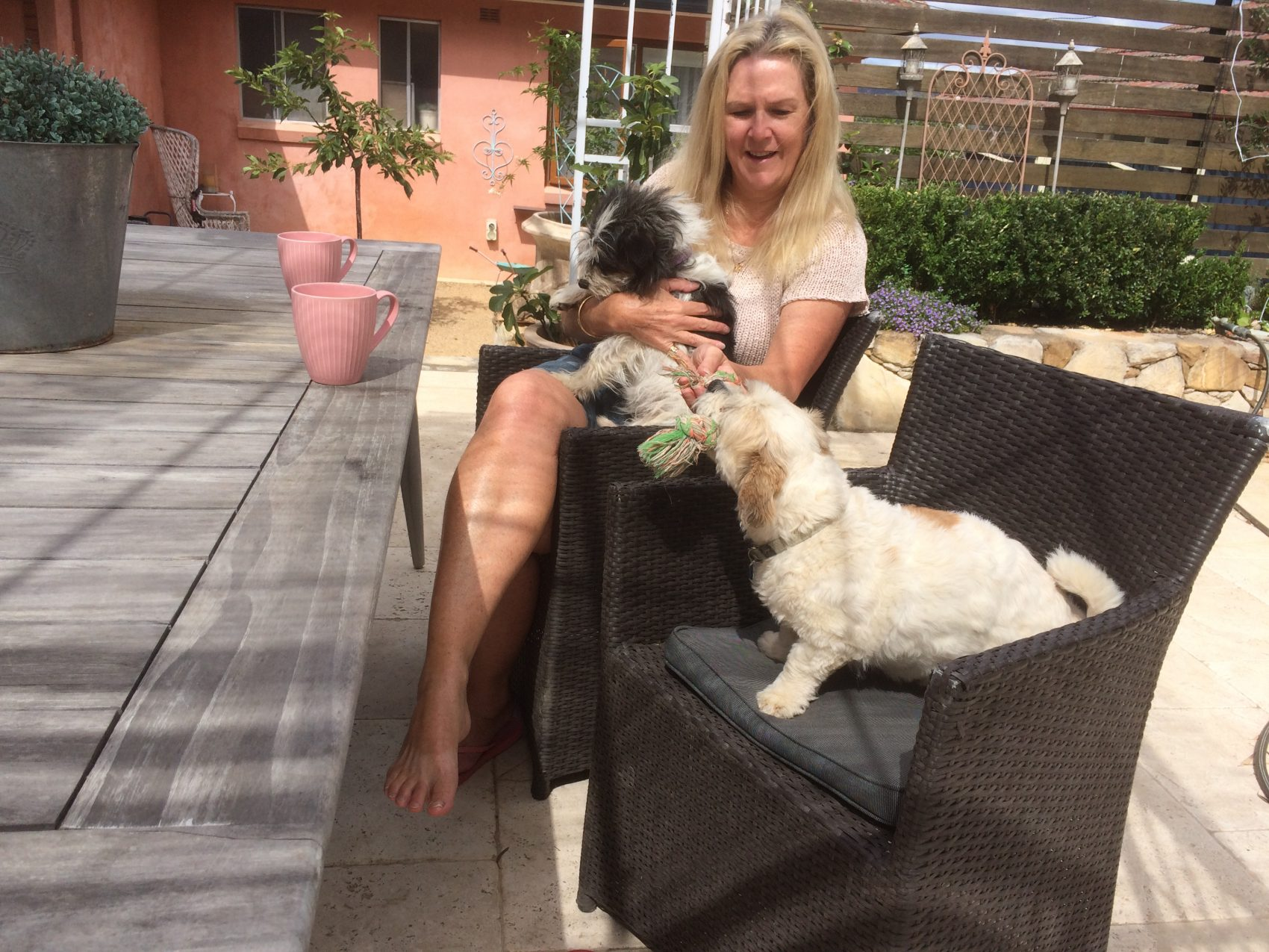 travel australia housesitting with pets